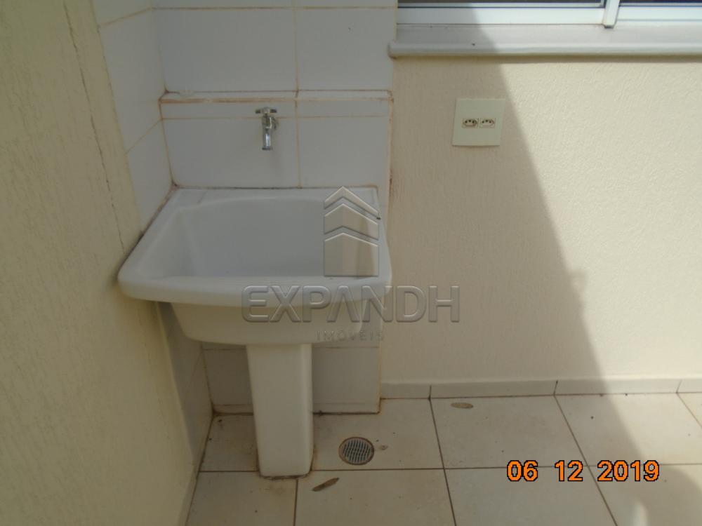 Alugar Casas / Condomínio em Sertãozinho R$ 1.250,00 - Foto 10