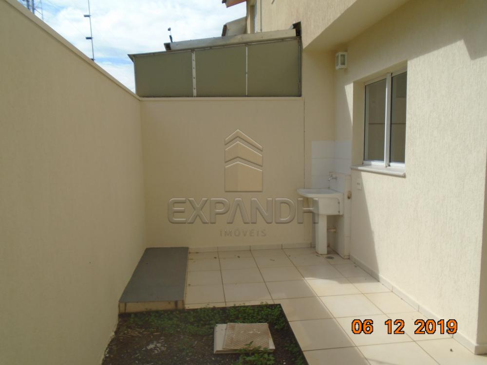 Alugar Casas / Condomínio em Sertãozinho R$ 1.250,00 - Foto 11