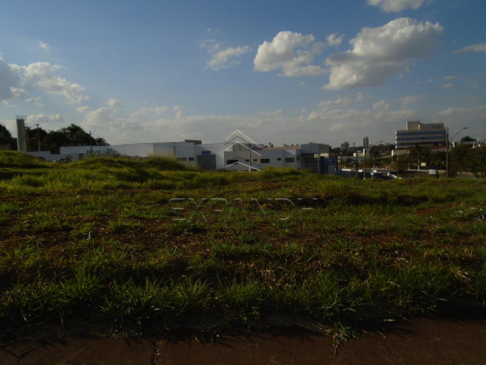 Comprar Terrenos / Padrão em Sertãozinho R$ 420.000,00 - Foto 1