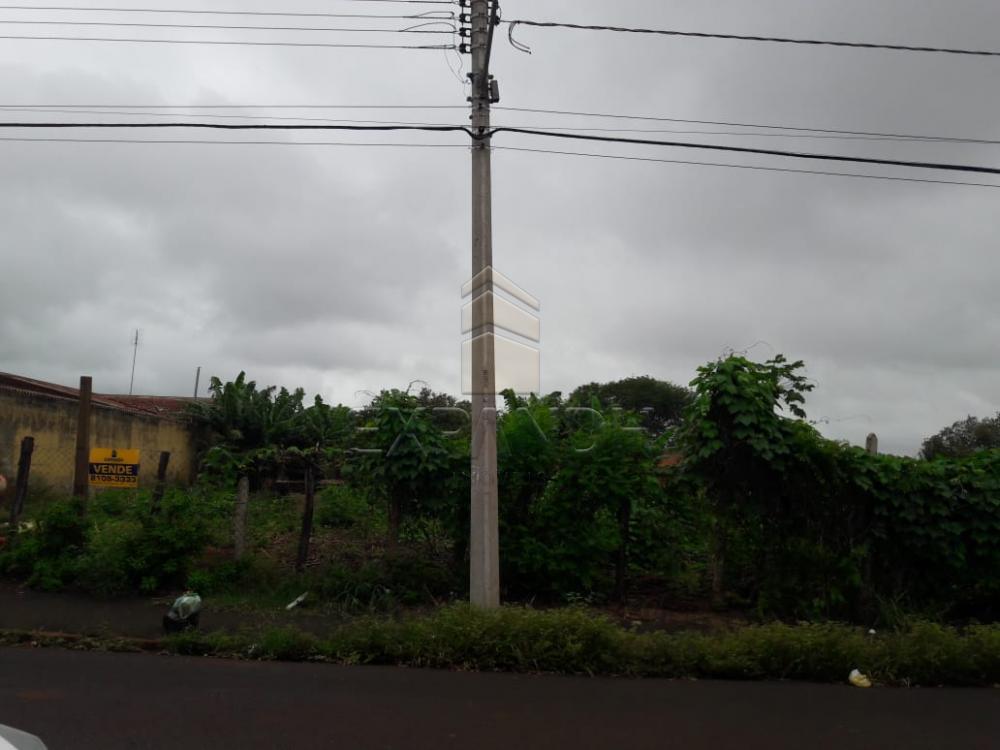 Alugar Terrenos / Área em Sertãozinho R$ 1.505,00 - Foto 1