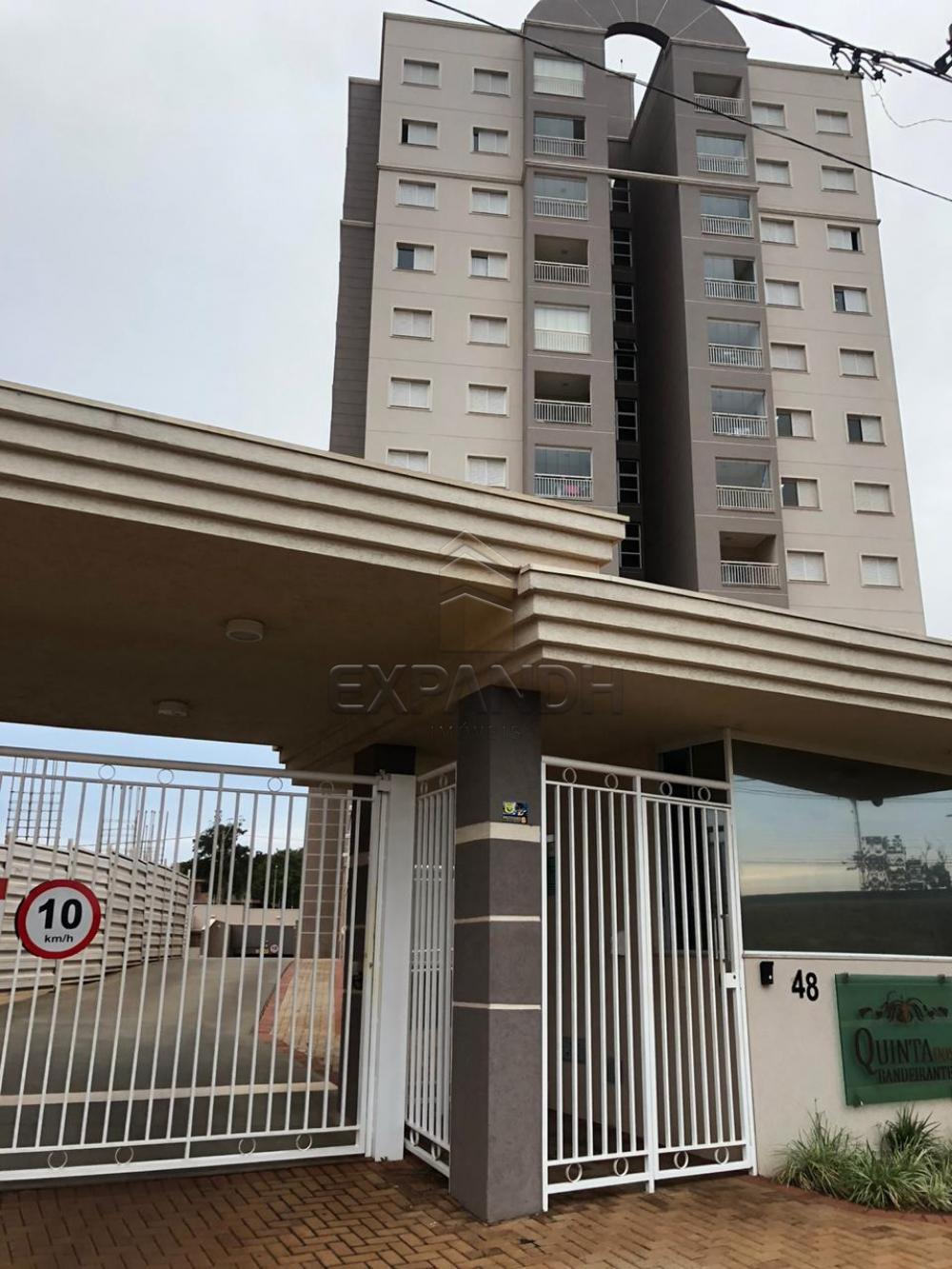 Alugar Apartamentos / Padrão em Sertãozinho apenas R$ 1.300,00 - Foto 1