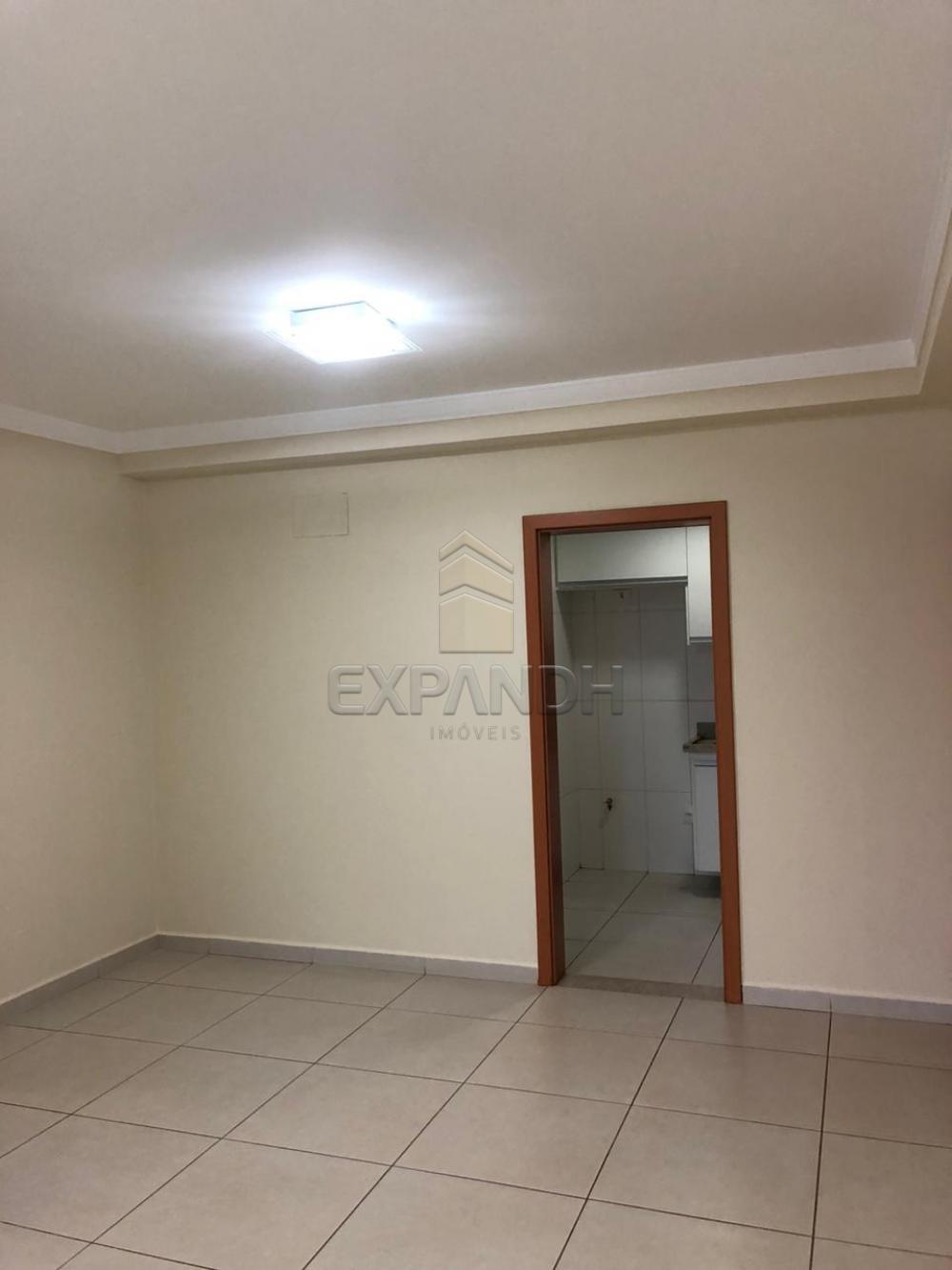 Alugar Apartamentos / Padrão em Sertãozinho apenas R$ 1.300,00 - Foto 3