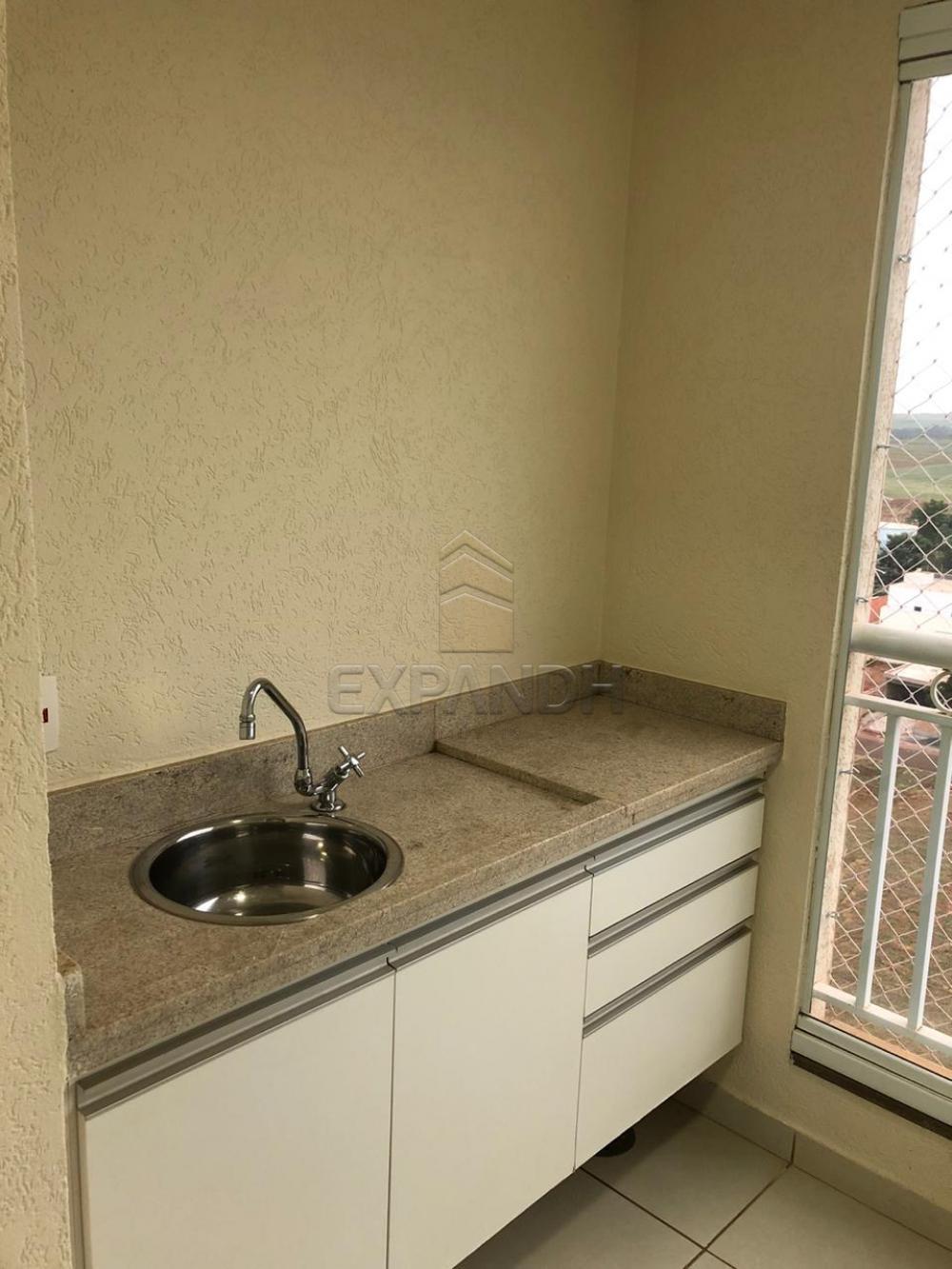 Alugar Apartamentos / Padrão em Sertãozinho apenas R$ 1.300,00 - Foto 4