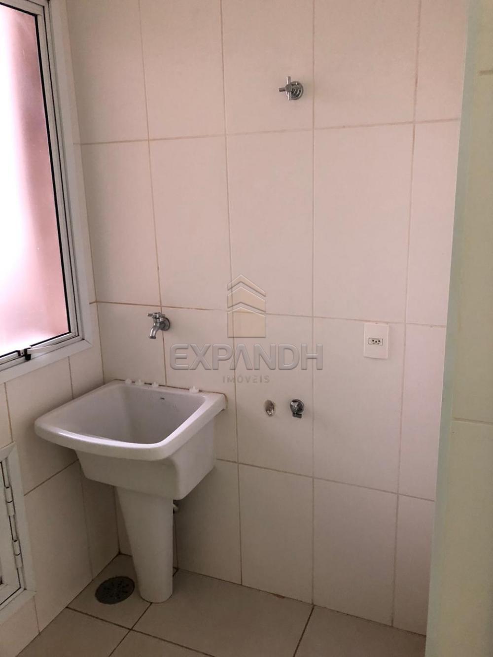 Alugar Apartamentos / Padrão em Sertãozinho apenas R$ 1.300,00 - Foto 7