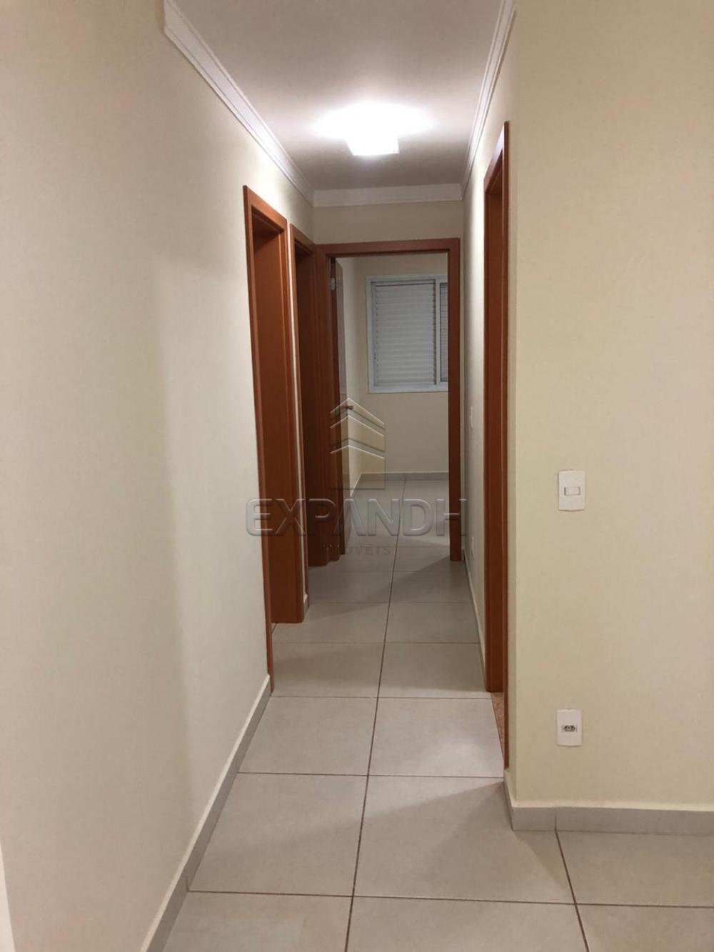 Alugar Apartamentos / Padrão em Sertãozinho apenas R$ 1.300,00 - Foto 9
