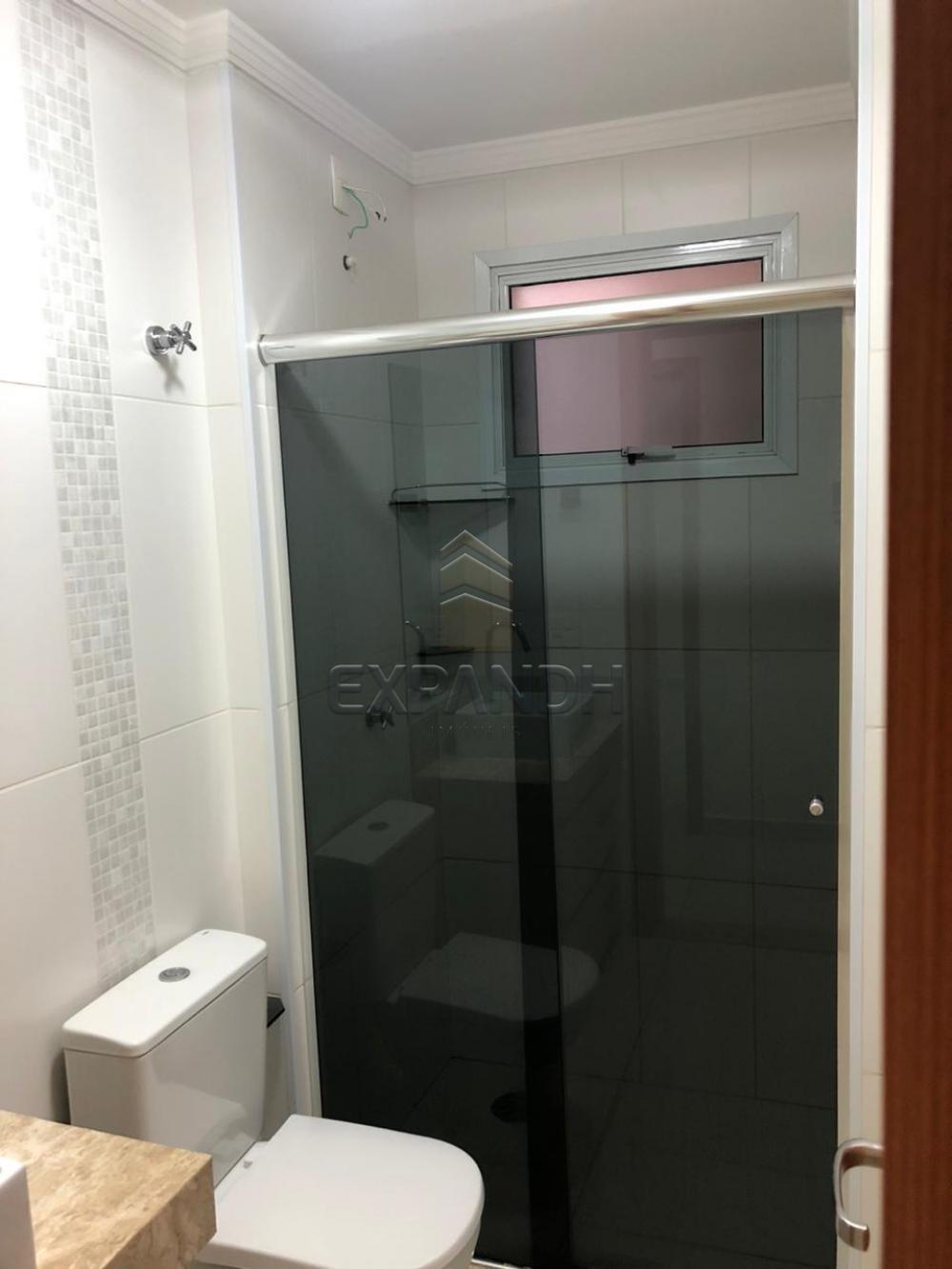 Alugar Apartamentos / Padrão em Sertãozinho apenas R$ 1.300,00 - Foto 11