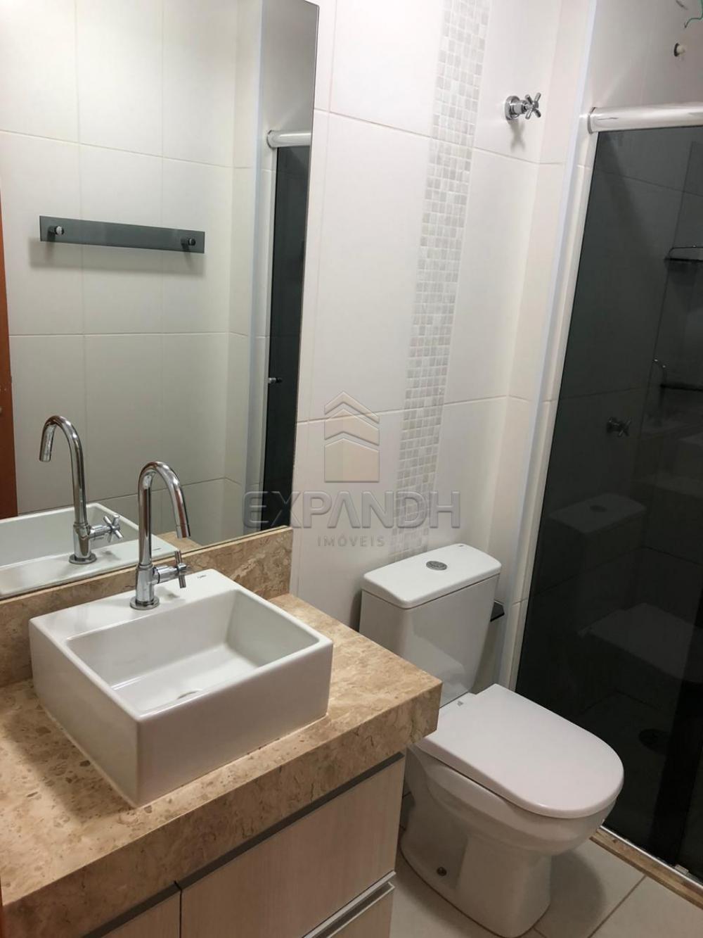Alugar Apartamentos / Padrão em Sertãozinho apenas R$ 1.300,00 - Foto 12