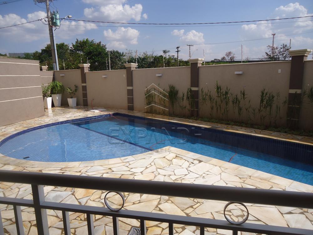 Alugar Apartamentos / Padrão em Sertãozinho apenas R$ 1.300,00 - Foto 22