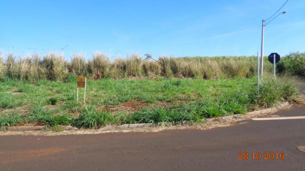 Comprar Terrenos / Padrão em Sertãozinho R$ 130.000,00 - Foto 2