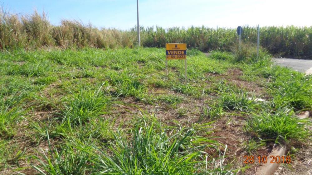 Comprar Terrenos / Padrão em Sertãozinho R$ 130.000,00 - Foto 6