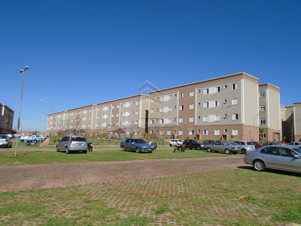 Comprar Apartamentos / Padrão em sertãozinho apenas R$ 125.000,00 - Foto 1