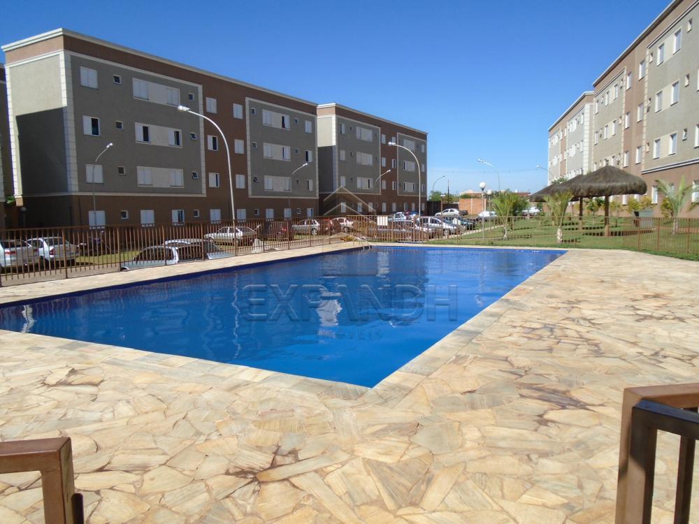 Comprar Apartamentos / Padrão em sertãozinho apenas R$ 125.000,00 - Foto 4