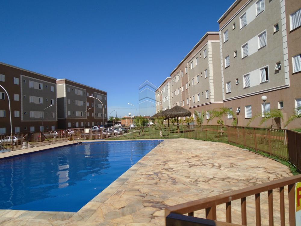 Comprar Apartamentos / Padrão em sertãozinho apenas R$ 125.000,00 - Foto 5