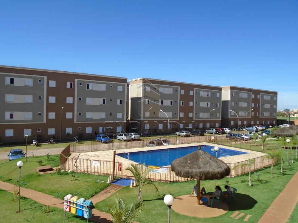 Comprar Apartamentos / Padrão em sertãozinho apenas R$ 125.000,00 - Foto 13