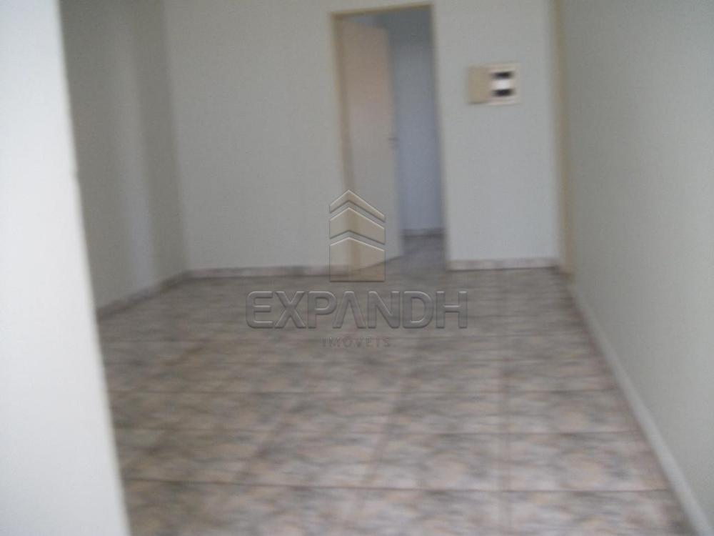 Alugar Comerciais / Salão em Sertãozinho apenas R$ 805,00 - Foto 11