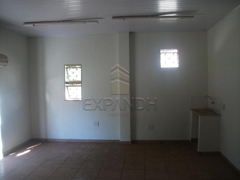 Alugar Comerciais / Salão em Sertãozinho R$ 1.005,00 - Foto 10
