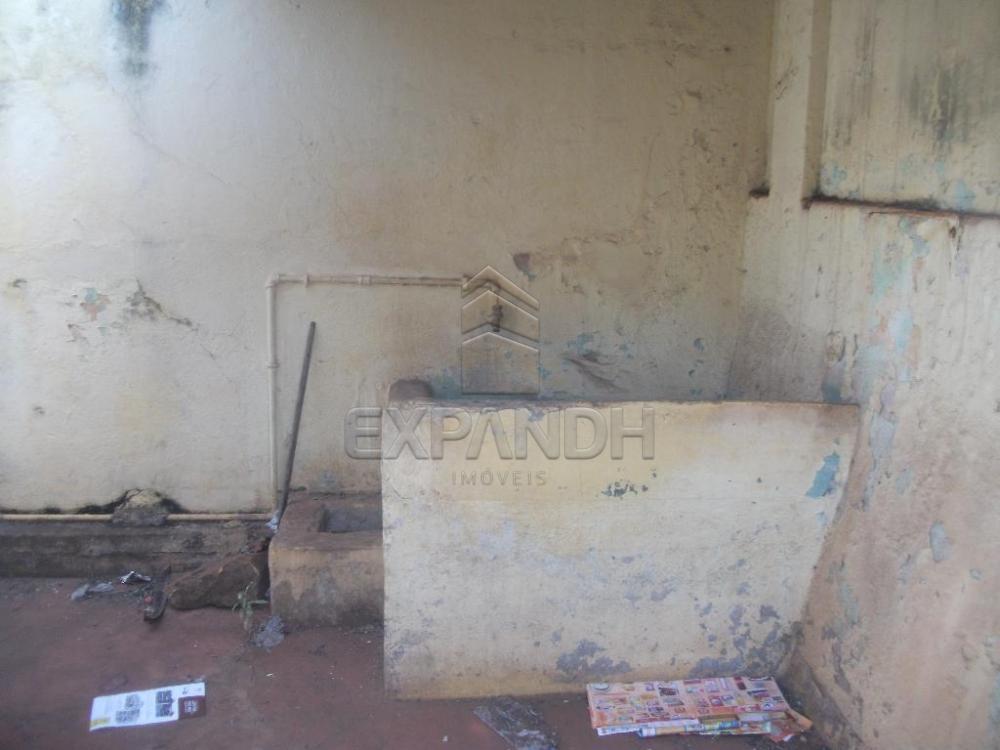 Alugar Casas / Padrão em Sertãozinho apenas R$ 755,00 - Foto 3