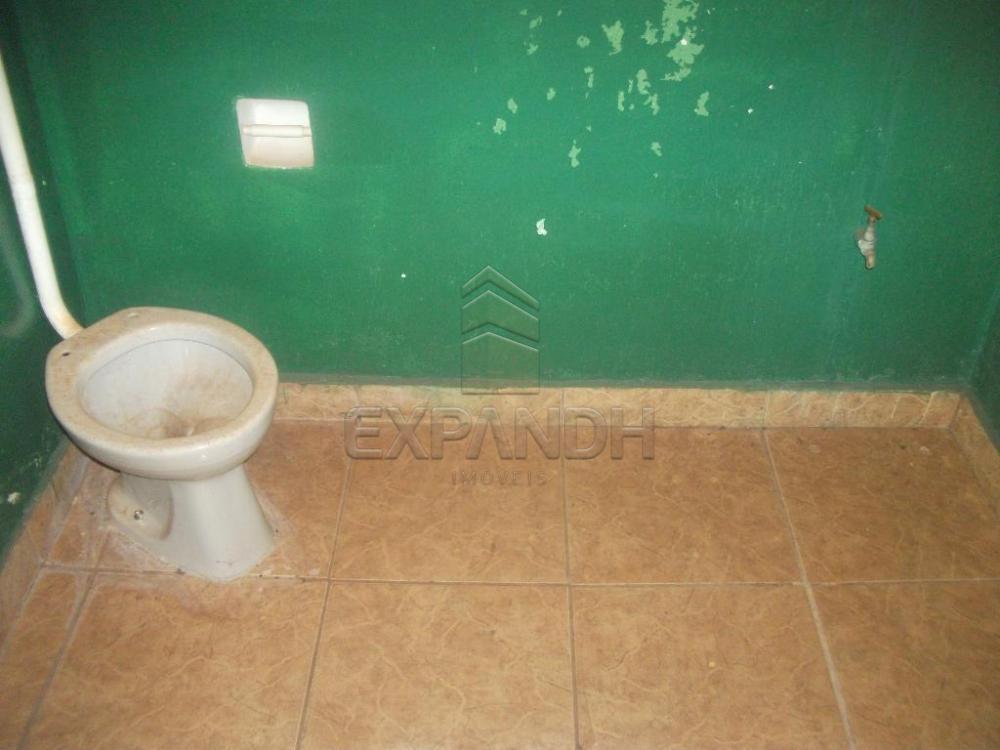 Alugar Casas / Padrão em Sertãozinho apenas R$ 755,00 - Foto 9