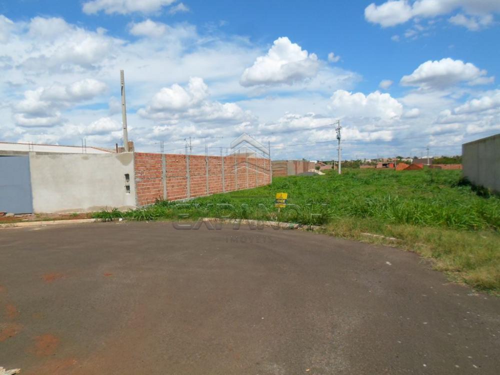 Comprar Terrenos / Padrão em Sertãozinho R$ 135.000,00 - Foto 1