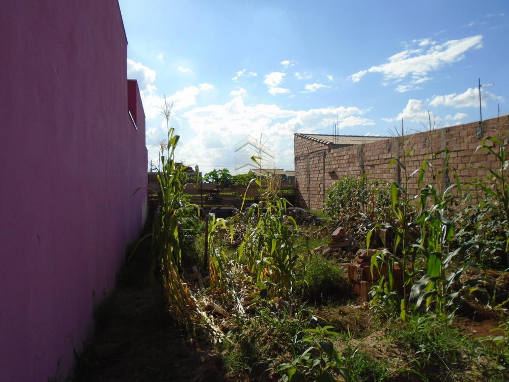 Alugar Casas / Padrão em Sertãozinho apenas R$ 2.000,00 - Foto 33