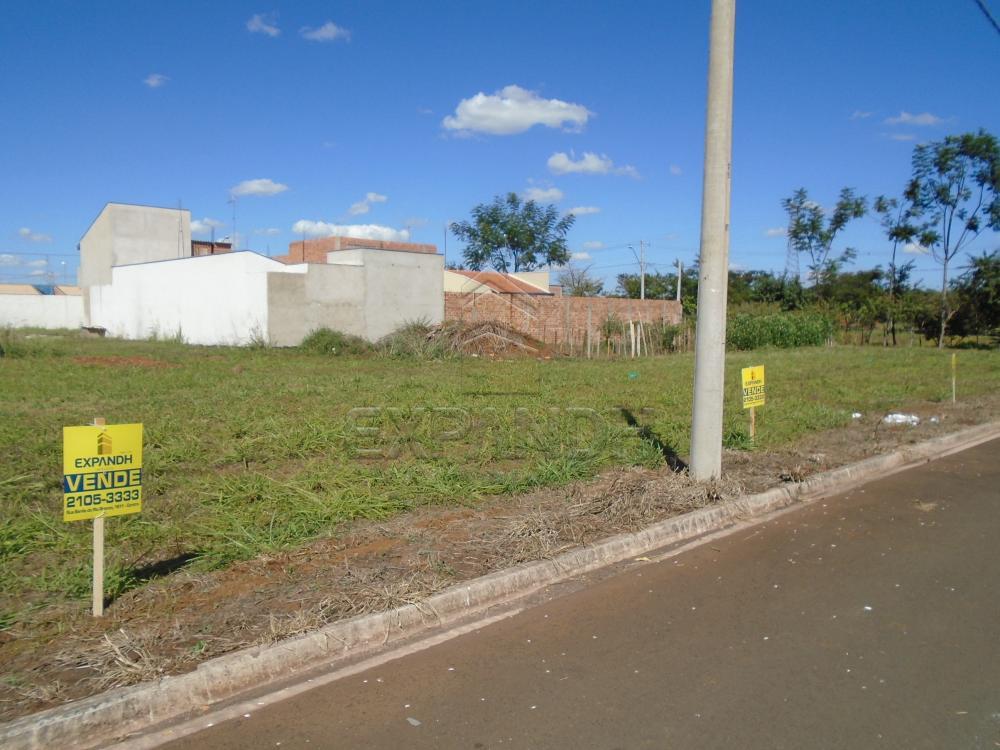 Comprar Terrenos / Padrão em Sertãozinho apenas R$ 87.000,00 - Foto 5