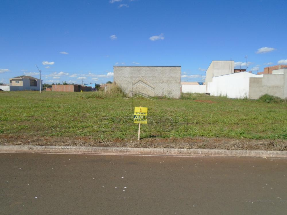 Comprar Terrenos / Padrão em Sertãozinho apenas R$ 87.000,00 - Foto 1