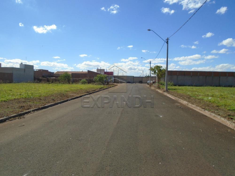 Comprar Terrenos / Padrão em Sertãozinho apenas R$ 87.000,00 - Foto 3