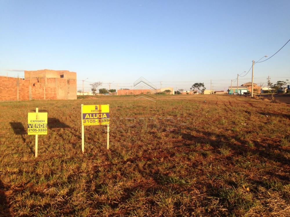 Comprar Terrenos / Padrão em Sertãozinho apenas R$ 184.000,00 - Foto 1