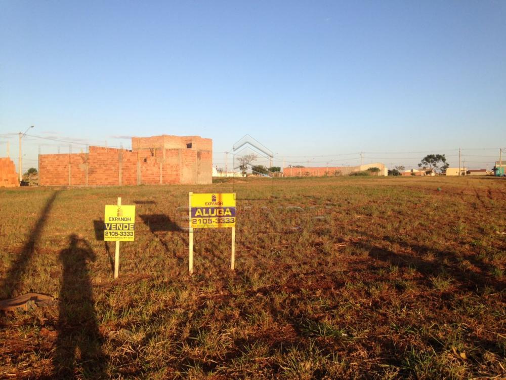 Comprar Terrenos / Padrão em Sertãozinho apenas R$ 184.000,00 - Foto 2