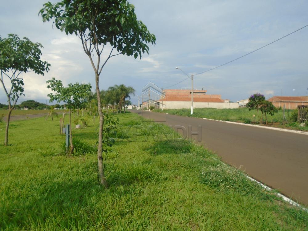 Comprar Terrenos / Padrão em Sertãozinho apenas R$ 116.000,00 - Foto 5