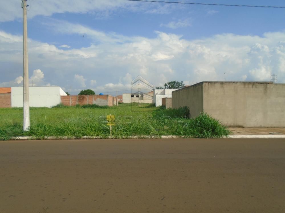 Comprar Terrenos / Padrão em Sertãozinho apenas R$ 116.000,00 - Foto 1