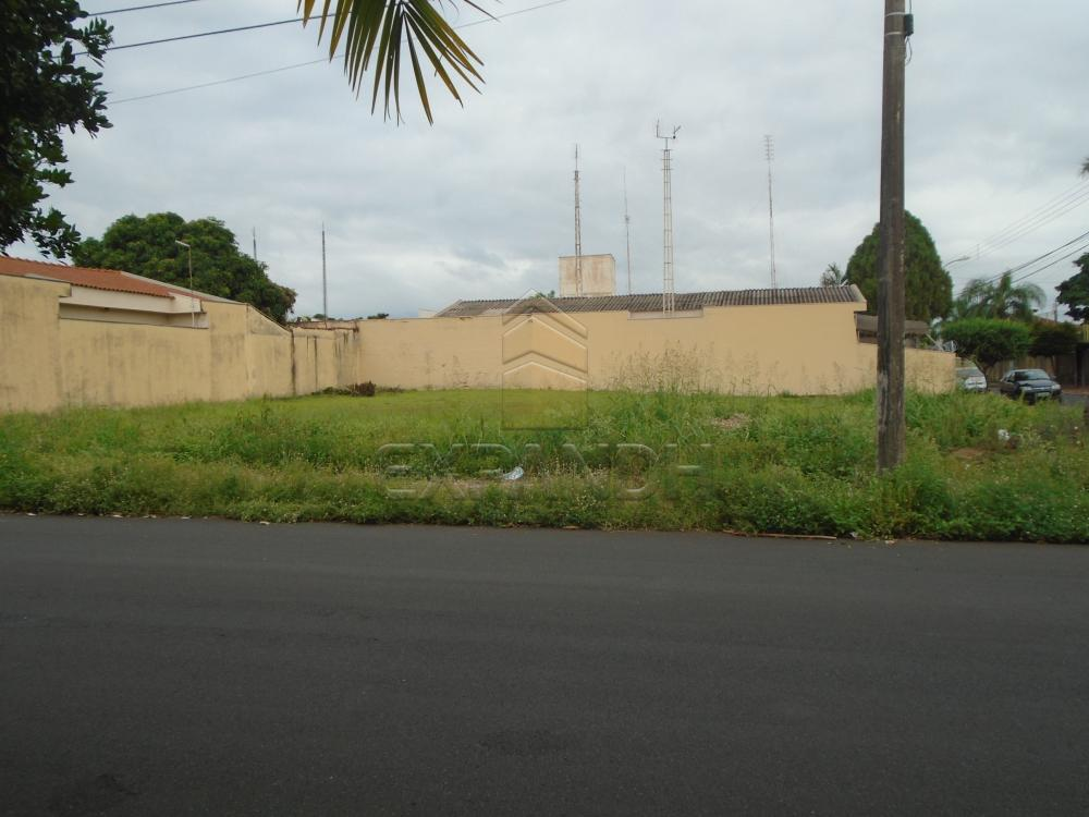 Comprar Terrenos / Padrão em Sertãozinho R$ 280.000,00 - Foto 1