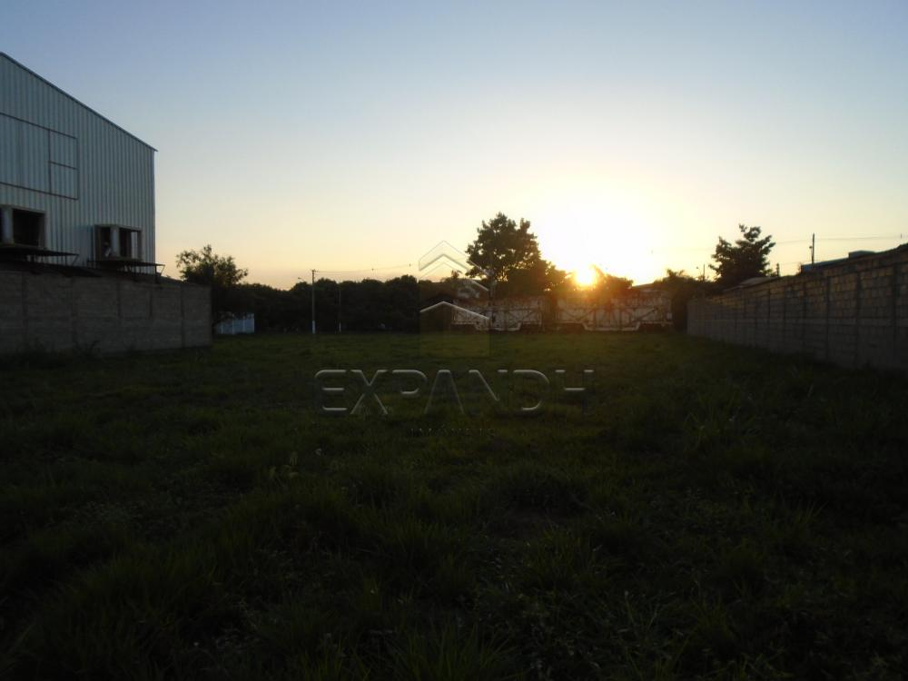 Comprar Terrenos / Padrão em Sertãozinho apenas R$ 320.000,00 - Foto 4