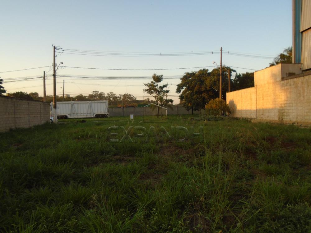 Comprar Terrenos / Padrão em Sertãozinho apenas R$ 320.000,00 - Foto 7