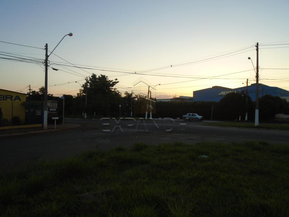 Comprar Terrenos / Padrão em Sertãozinho apenas R$ 320.000,00 - Foto 11