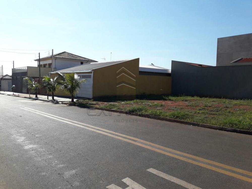 Comprar Casas / Padrão em Pradópolis apenas R$ 360.000,00 - Foto 2