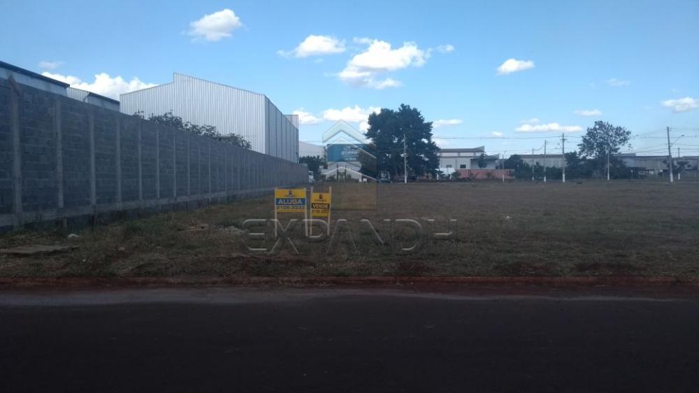 Alugar Terrenos / Padrão em Sertãozinho apenas R$ 1.600,00 - Foto 1