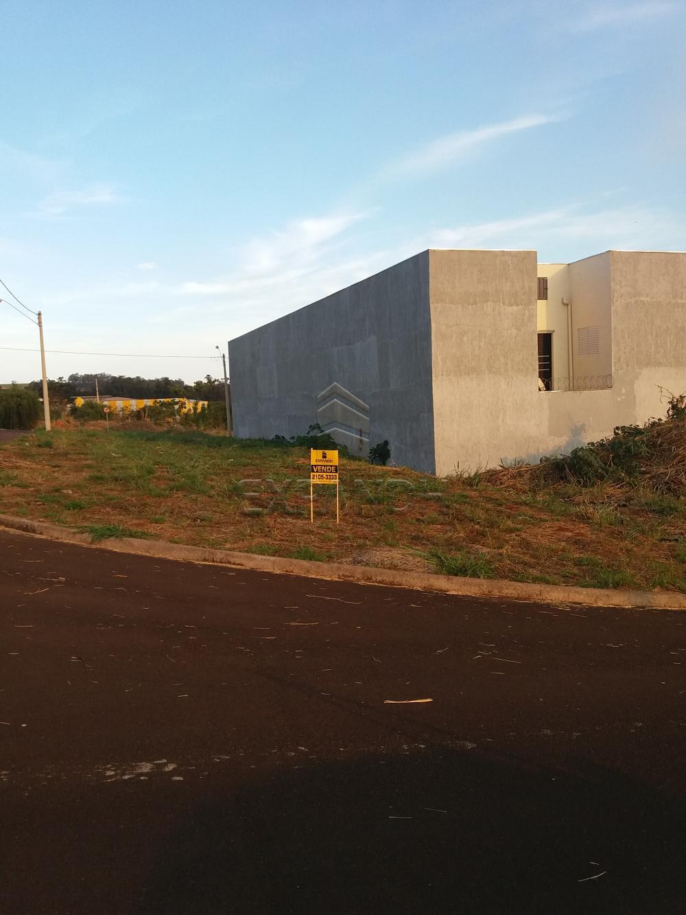 Comprar Terrenos / Padrão em Sertãozinho R$ 100.000,00 - Foto 3