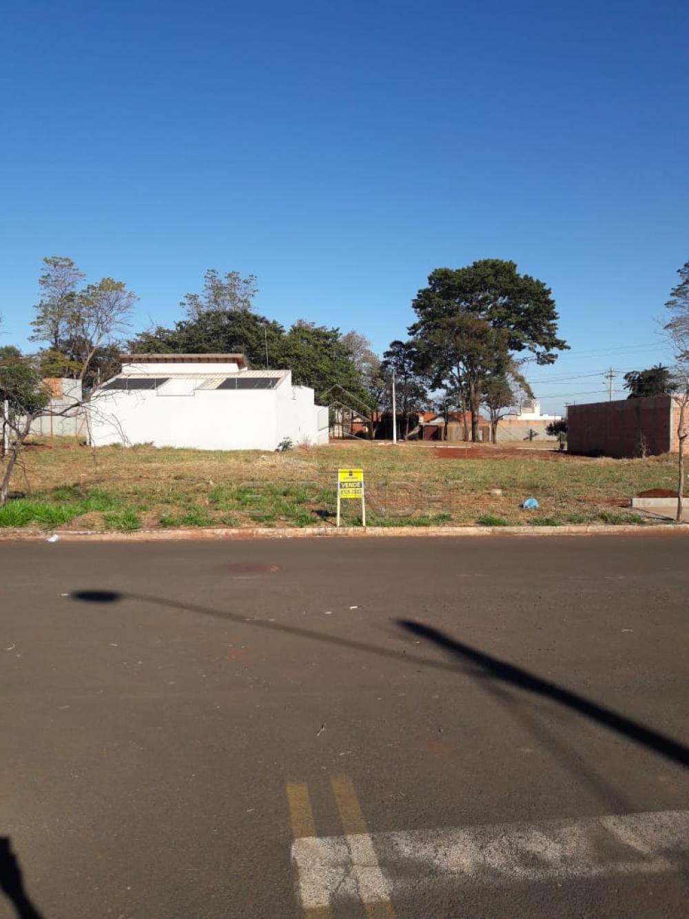 Comprar Terrenos / Padrão em Sertãozinho apenas R$ 99.000,00 - Foto 4