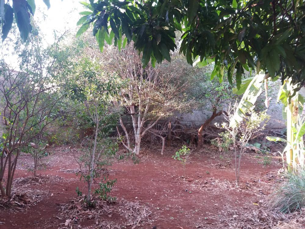 Comprar Casas / Padrão em Sertãozinho R$ 750.000,00 - Foto 12