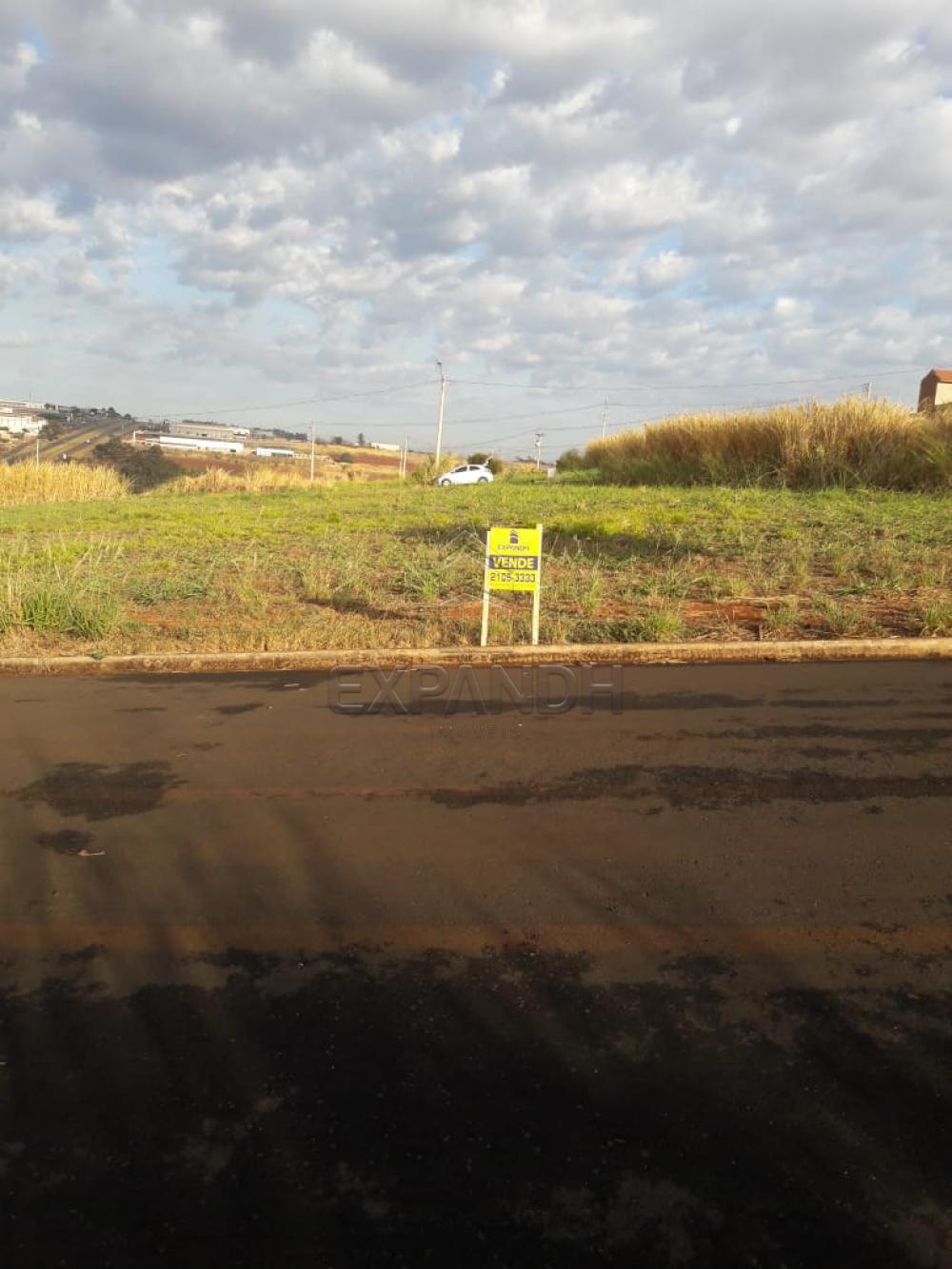 Comprar Terrenos / Padrão em Sertãozinho apenas R$ 80.000,00 - Foto 1