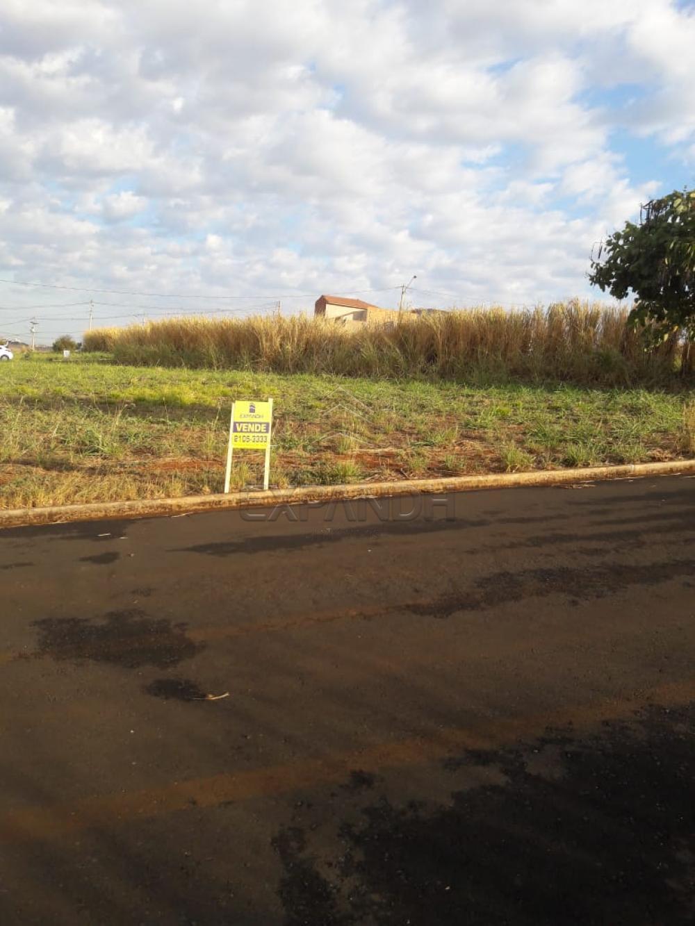 Comprar Terrenos / Padrão em Sertãozinho apenas R$ 80.000,00 - Foto 2
