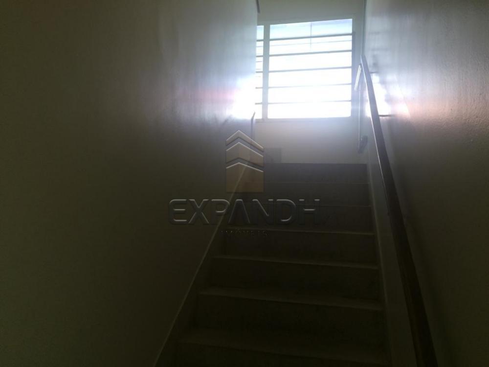 Alugar Casas / Padrão em Sertãozinho apenas R$ 1.800,00 - Foto 4