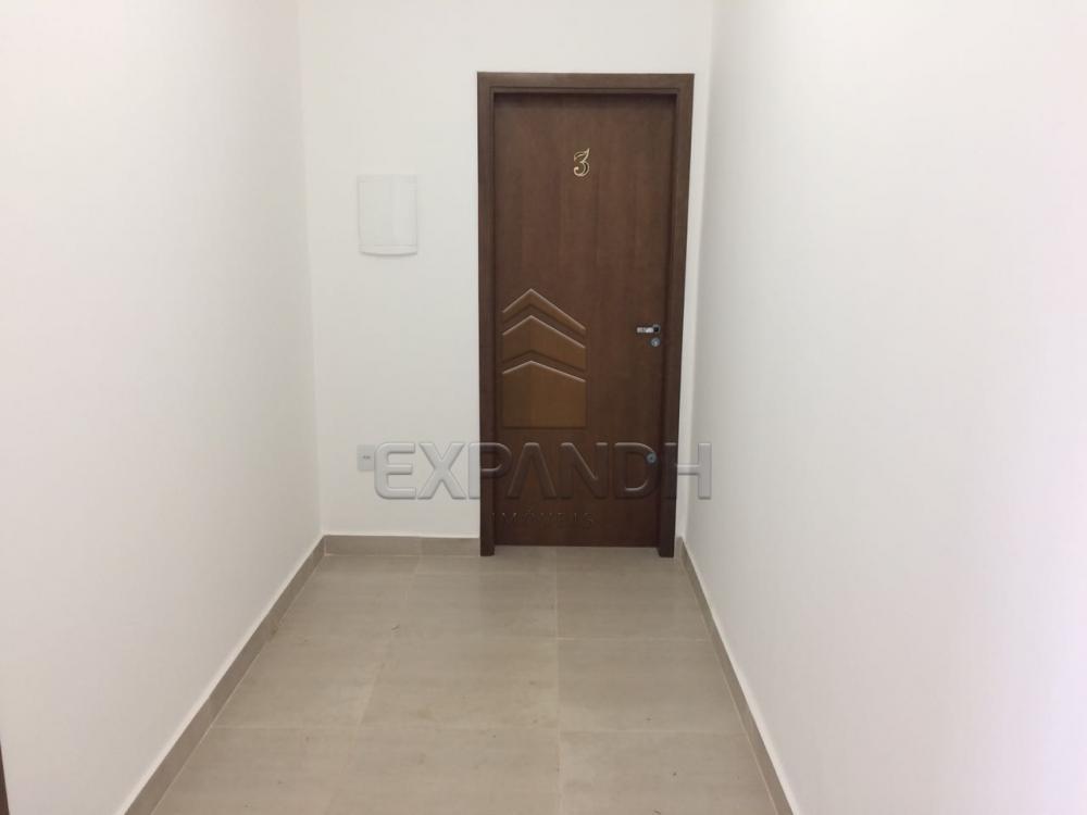 Alugar Comerciais / Sala em Sertãozinho apenas R$ 1.000,00 - Foto 4
