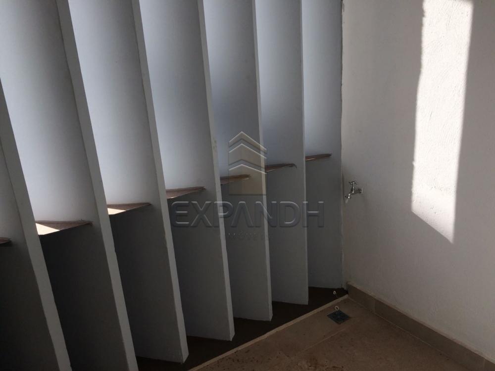 Alugar Comerciais / Sala em Sertãozinho apenas R$ 1.000,00 - Foto 17