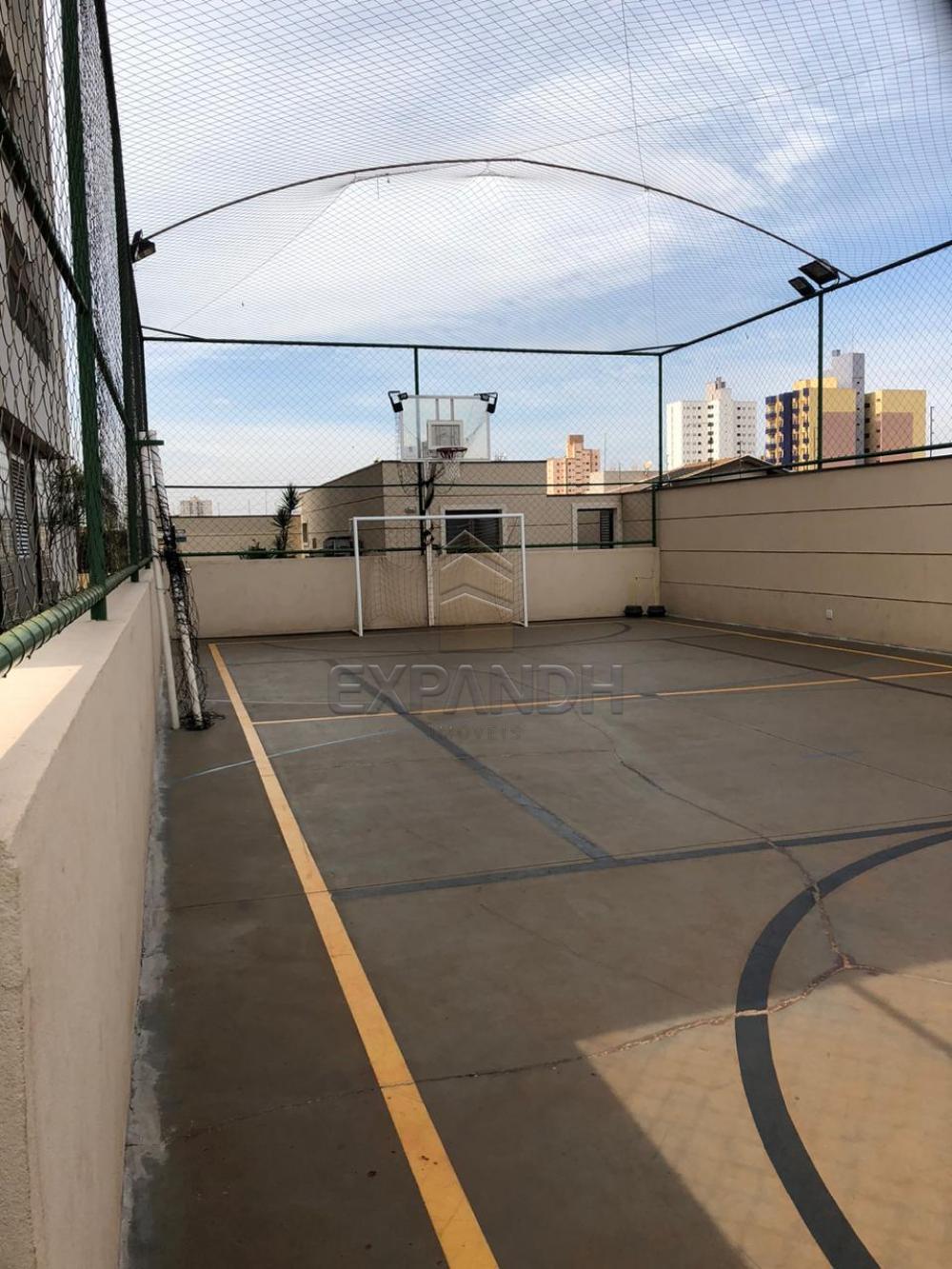 Alugar Apartamentos / Padrão em Sertãozinho apenas R$ 1.650,00 - Foto 41