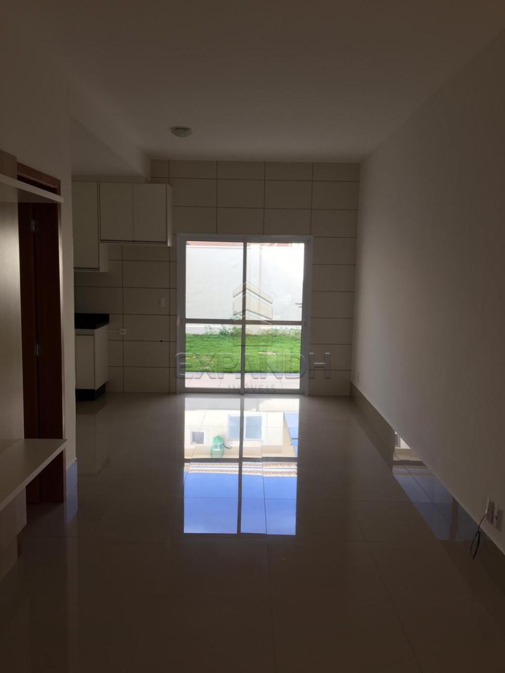 Alugar Casas / Condomínio em Sertãozinho R$ 1.200,00 - Foto 5