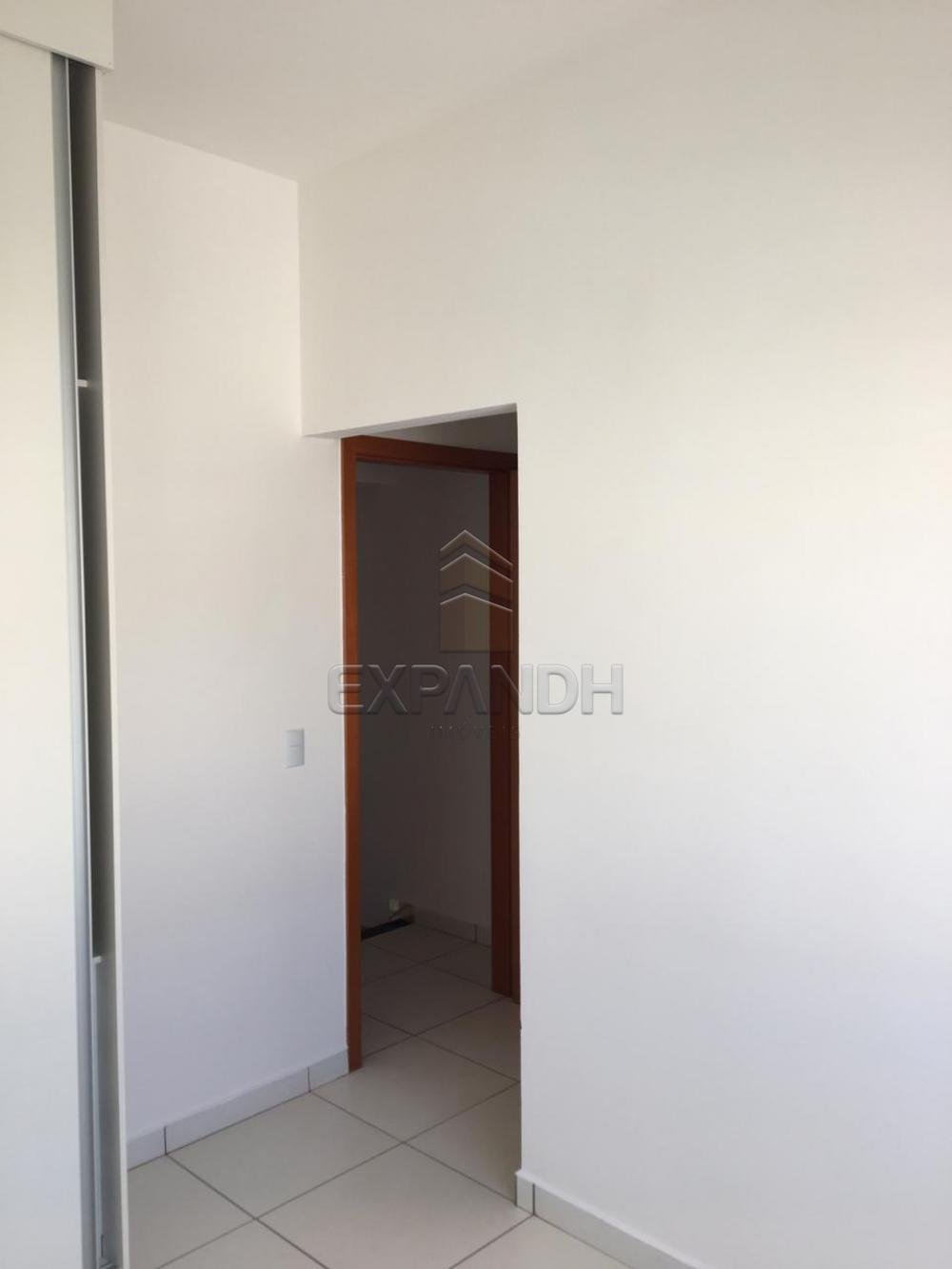 Alugar Casas / Condomínio em Sertãozinho R$ 1.200,00 - Foto 30