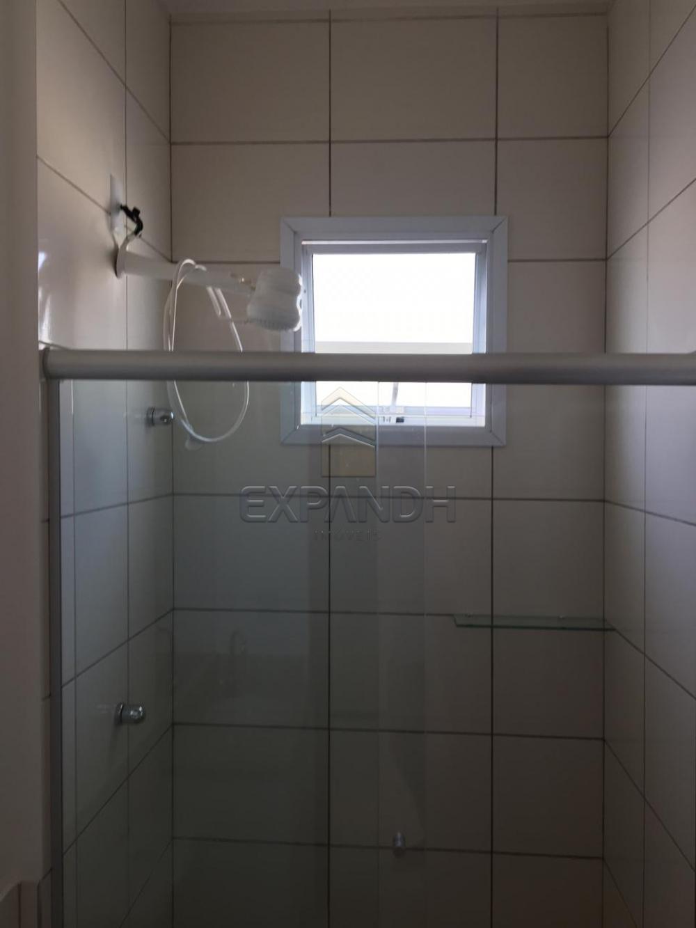 Alugar Casas / Condomínio em Sertãozinho R$ 1.200,00 - Foto 32