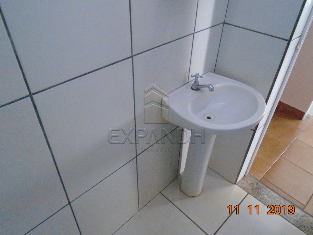 Alugar Casas / Padrão em Sertãozinho R$ 750,00 - Foto 12